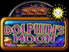 dolphins moon